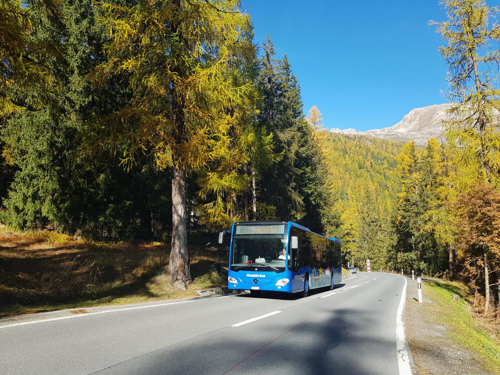 Engadin Bus im Wald